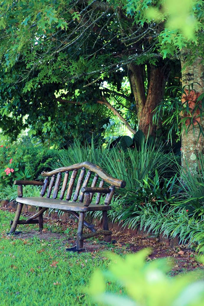 The rustic timber bench seat is a favourite viewing spot in the garden.