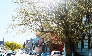 Suburb to watch: Castlemaine, Victoria