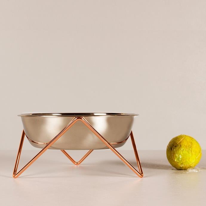 'Woof Luxe' **pet bowl** in copper, $38, from Bendo.