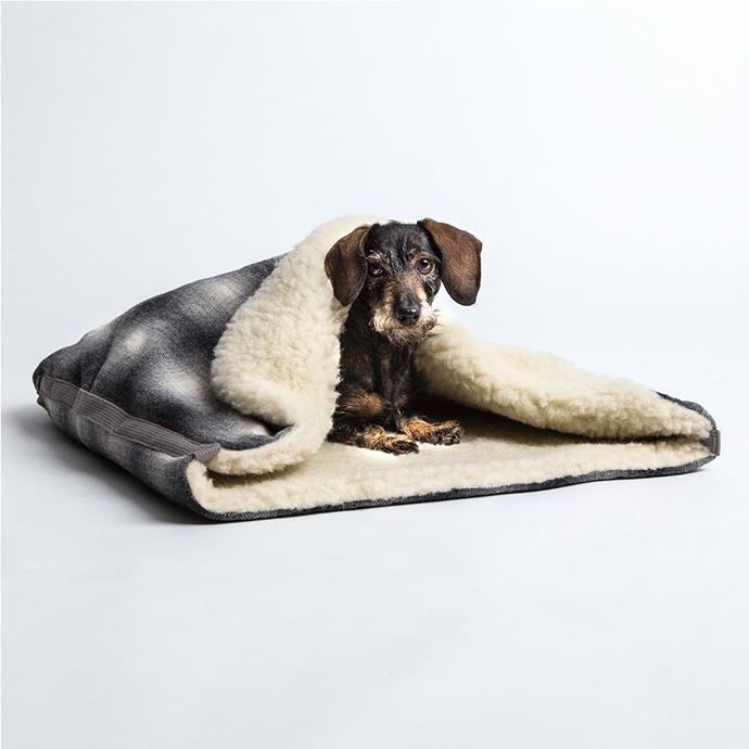 Dog **sleeping bag**, $235, from Lavish Tails.
