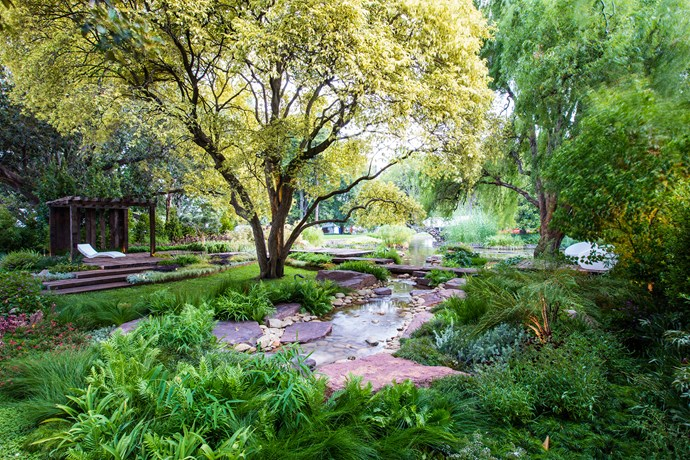 The Legacies garden made brilliant use of its lakeside setting in Carlton Gardens. Children could have great fun playing and exploring in a garden like this one, while the small lawn under a sheltering privet would be ideal for a family picnic spot.