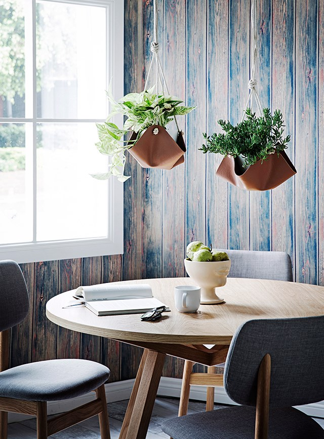 Indoor plants can breathe life into the home and instantly refresh a space. Photography: James Henry / bauersyndication.com.au