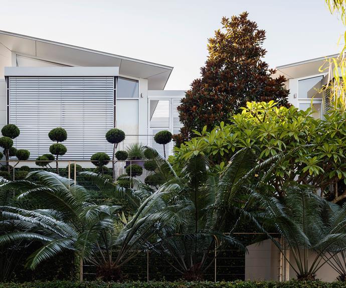 garden life landscape design