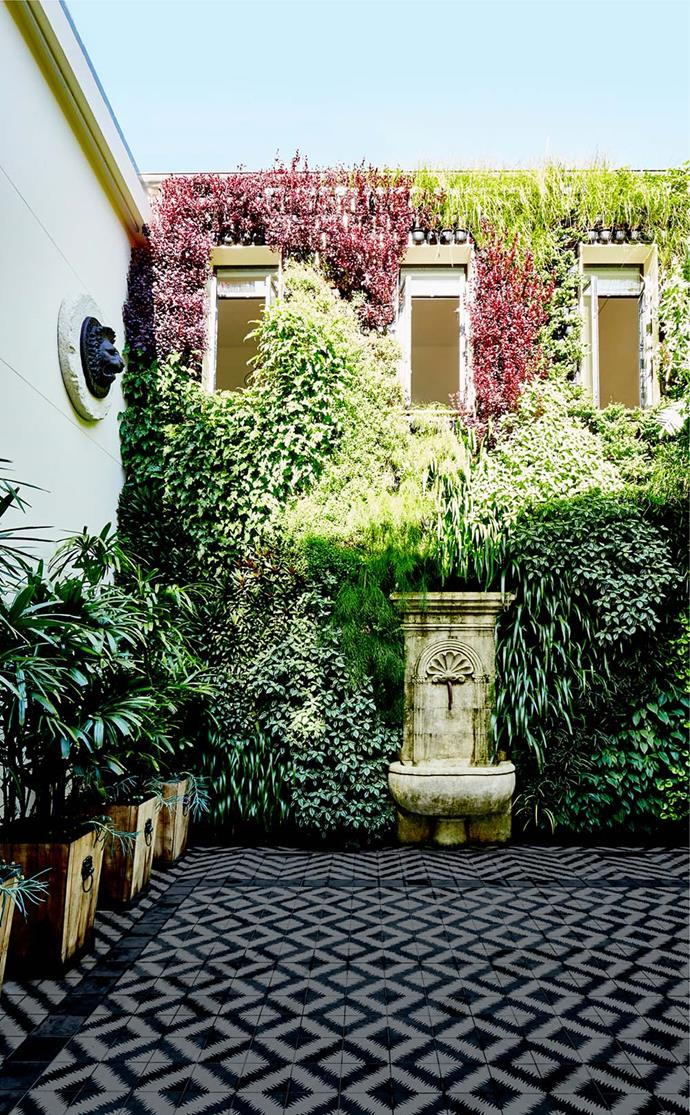 """Vertikal created this lush and dramatic green wall in the courtyard of this [Sydney home](https://www.homestolove.com.au/saraville-the-grandest-terrace-of-them-all-4215