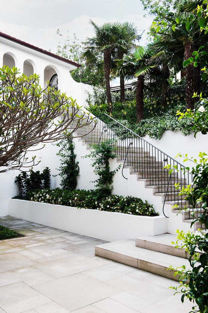 """The entrance to this [Sydney home](https://www.homestolove.com.au/mediterranean-inspired-sydney-harbour-house-5723