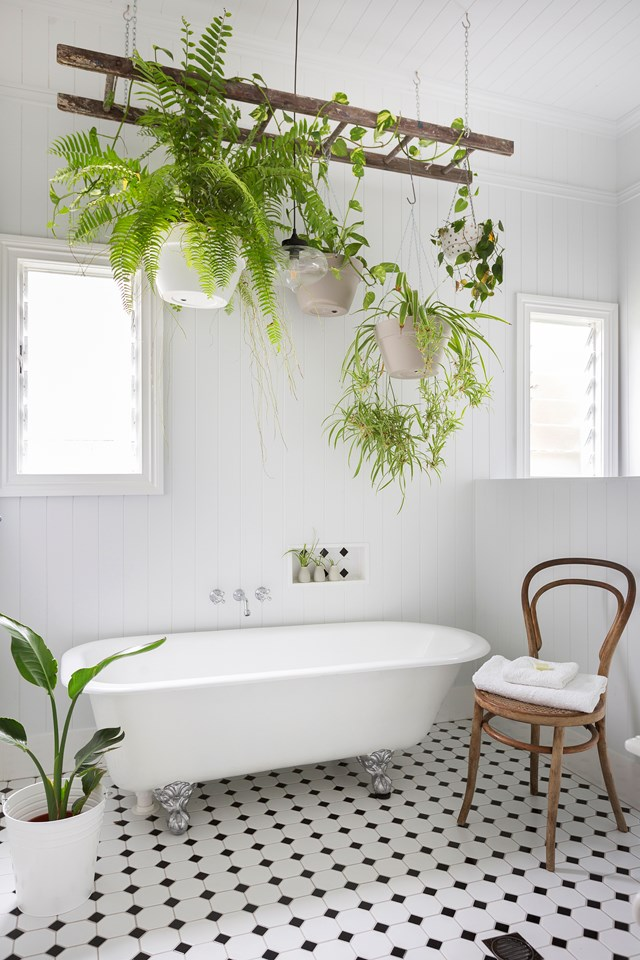 An old ladder has been repurposed into an indoor plant installation in this vintage-inspired bathroom.
