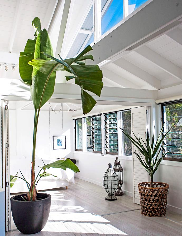 """Louvres let in the sea breeze in this beachside adobe. [Take a tour >](http://www.homestolove.com.au/jamies-beachside-house-renovation-1404 target=""""_blank"""")"""