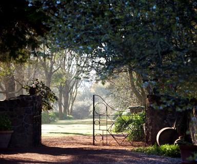 Springtime splendour in a historic garden