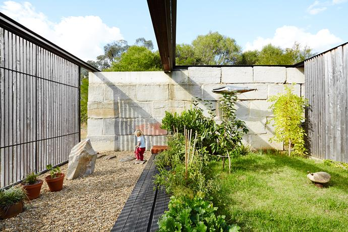 Fela loves to explore the enclosed garden. A water tank, wood store and services are tucked behind the rear wall. When the roof of the house retracts fully, it covers this section of the garden. Sculptures by Ben Gilbert.
