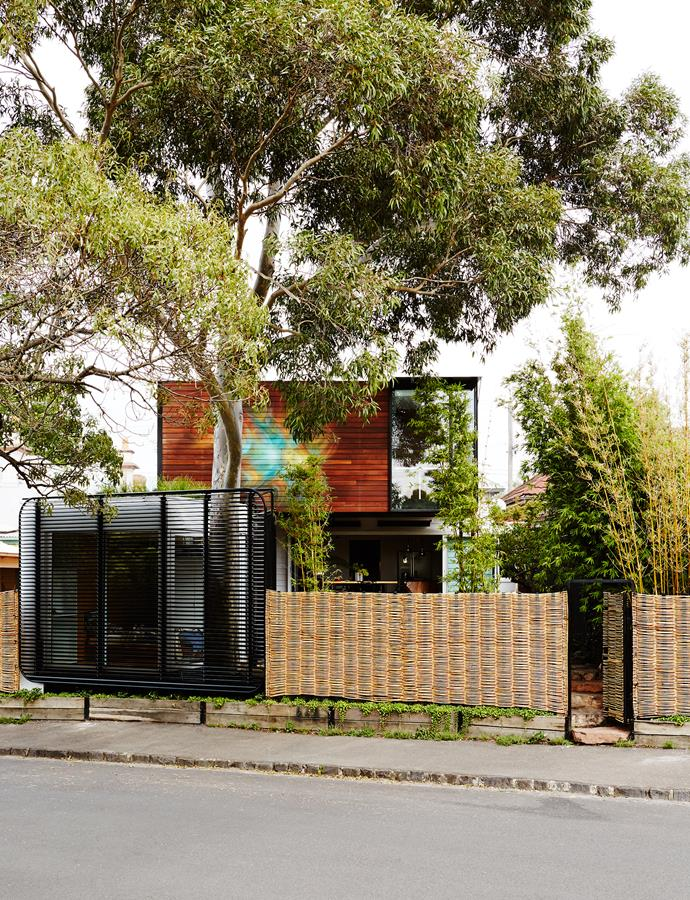 Visitors entering from the back see the home's magnificent spotted gum tree.