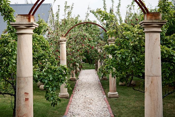 "This colonnaded walkway was inspired by a visit to Hadrian's Villa in Tivoli, Italy. ""I loved the remnants of its ancient colonnade,"" says Debbie. ""This is a very simple version of it."" The stone columns. Are topped with steel arches and flanked by apple and pear trees."