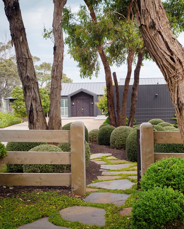 "This [manicured front yard](https://www.homestolove.com.au/manicured-garden-victoria-mornington-peninsula-5915|target=""_blank"")  includes stepping stones made out of Wistow slate and clipped balls (Buxus in front of the fence and Westringia behind), illustrating and atmospheric, yet sophisticated entry point."