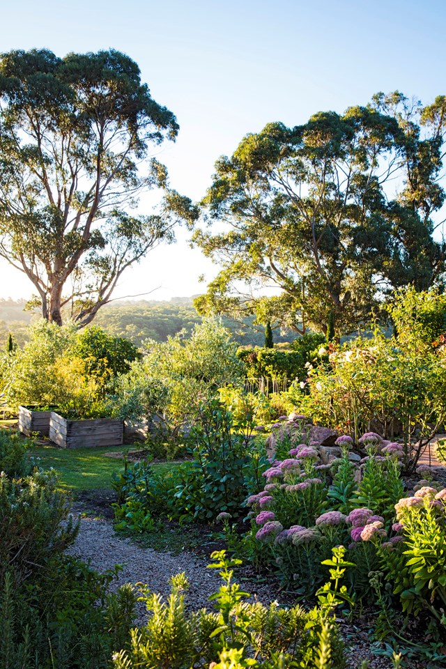 """This stunning [edible garden on Victoria's Mornington Peninsula](https://www.homestolove.com.au/formal-cottage-garden-italy-5954