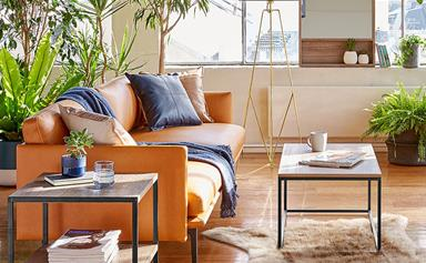 10 affordable (but expensive-looking) Kmart home decor buys under $30