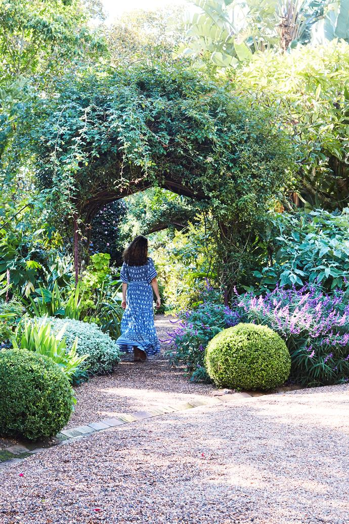 Custodian Anna van der Gardner strolls along one of the pathways in the historic Sydney garden, under arches laden with roses and other sweet-smelling climbers. Purple *Salvia leucantha* 'Santa Barbara' is in flower here for much of the year.