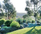 An English-meets-Australian garden in northern NSW