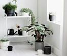 11 pretty pots to house your indoor plant collection