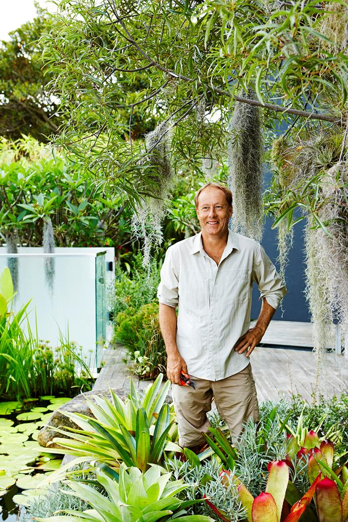 Horticulturist and founder of The Greenwall Company, Mark Paul.