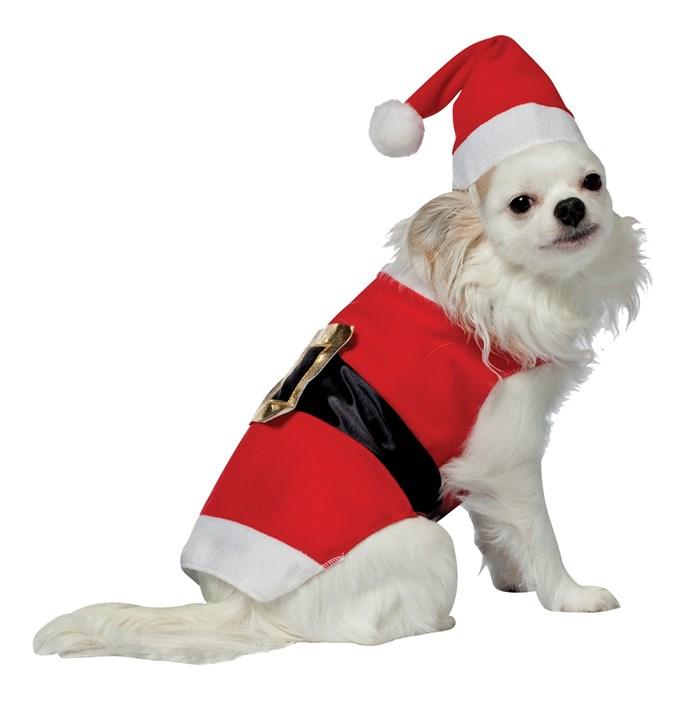 "Santa Claus Pet Dog Costume, $21.95, [Costumes.com](https://www.costumes.com.au/santa-pet-costume.html target=""_blank"")"