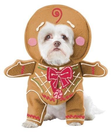 "Gingerbread Pup Dog Costume, $32.99, [CostumeBox.com](https://www.costumebox.com.au/gingerbread-pup-dog-costume.html?gclid=EAIaIQobChMI0avS74yB2AIVngYqCh2qRAXBEAQYASABEgLF_fD_BwE target=""_blank"")"