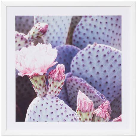 "Cactus Flower Print, $99, [Freedom](https://www.freedom.com.au/decorate/wall-decor/prints/212/23846975/cactus-flower-print?reflist=decorate/wall-decor/all-wall-decor|target=""_blank""|rel=""nofollow"")"