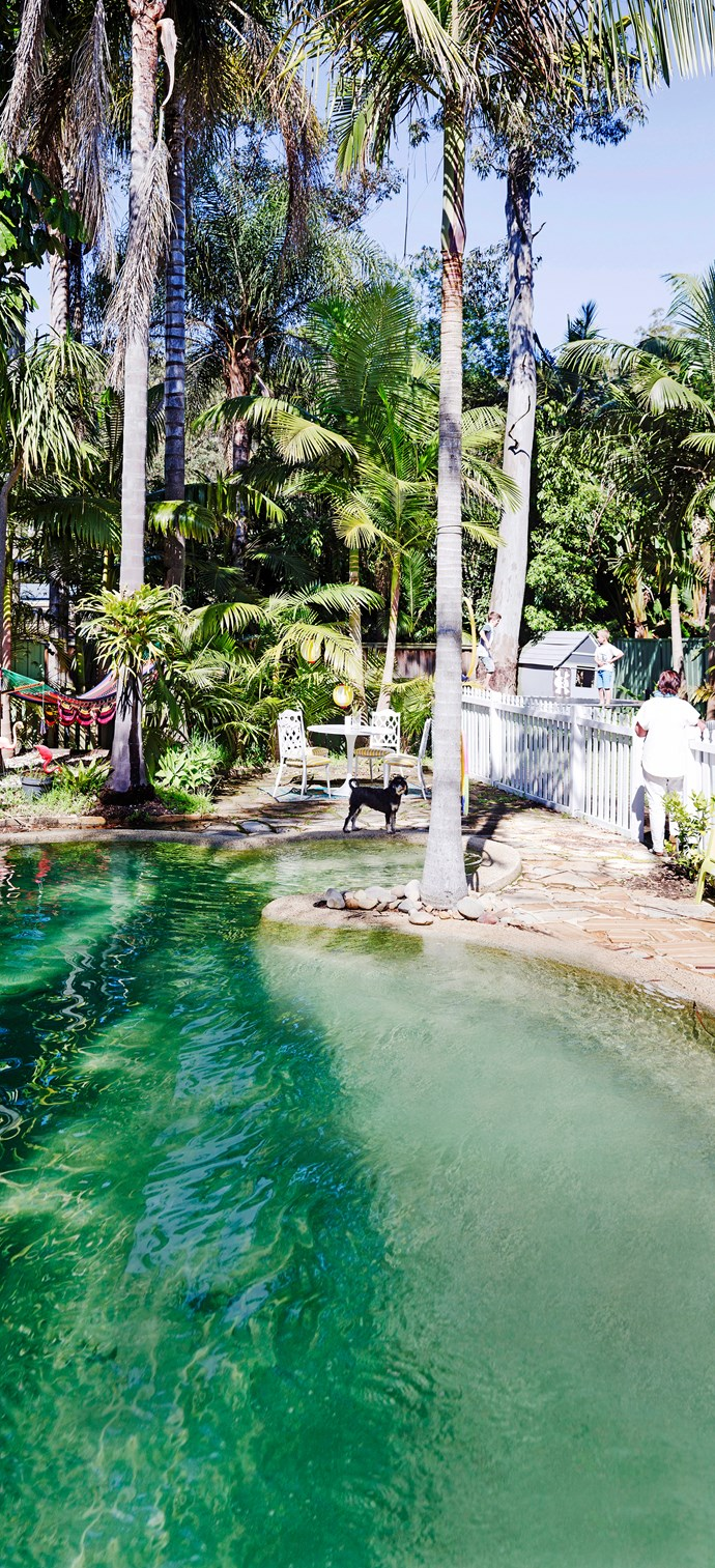 The natural pool is  finding favour with those who dislike pool chemicals and prefer a more naturalistic look.