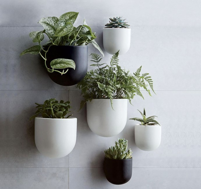 """Wallscape ceramic planters, from $29, from [West Elm](http://www.westelm.com.au/ceramic-wallscape-planters-d4389