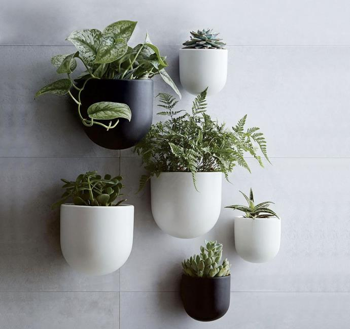 "Wallscape ceramic planters, from $29, from [West Elm](http://www.westelm.com.au/ceramic-wallscape-planters-d4389|target=""_blank"")"
