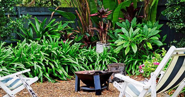12 low maintenance garden ideas | homes+ on Low Maintenance:cyizg0Gje0G= Backyard Designs  id=78388