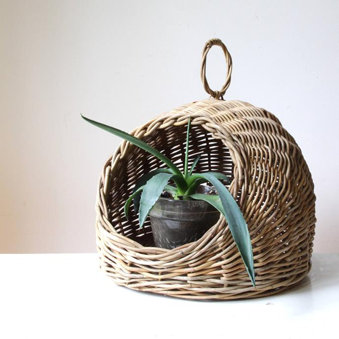 "Wicker Planter Basket, $48 at [Etsy](http://fave.co/2D4LzGs|target=""_blank"")"