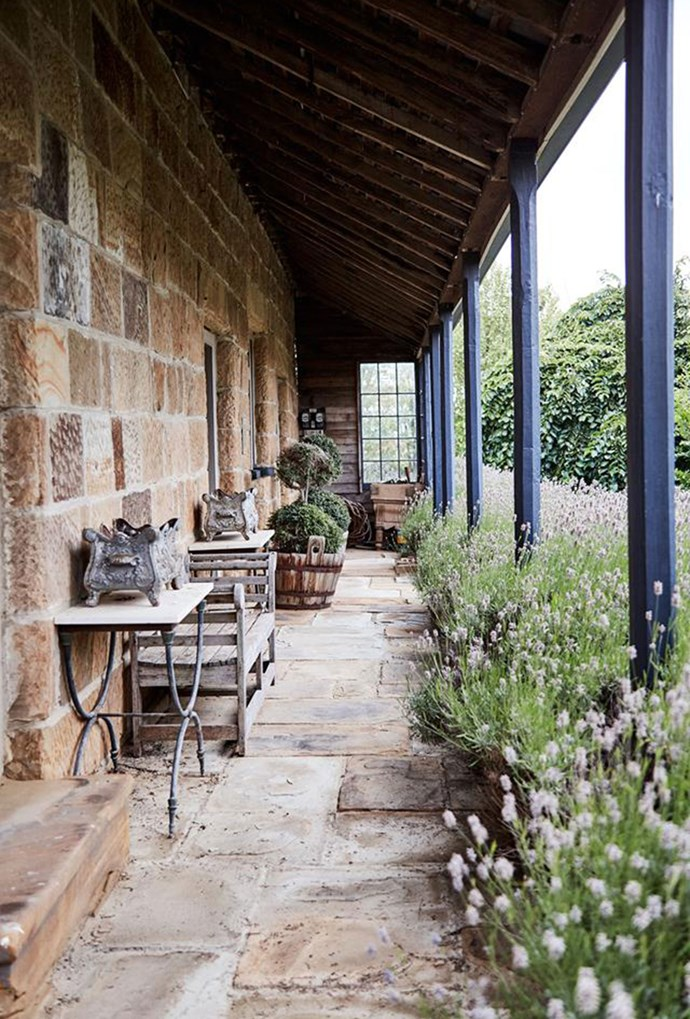 """A path of stone pavers, surrounded by lavender gives this Tasmanian abode a little slice of [European style](https://www.homestolove.com.au/european-style-garden-in-tasmania-5889