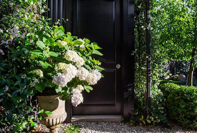 """Potted Hydrangeas and a [cobblestone walkway](https://www.homestolove.com.au/small-garden-design-by-peter-fudge-gardens-5546