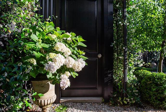 "Potted Hydrangeas and a [cobblestone walkway](https://www.homestolove.com.au/small-garden-design-by-peter-fudge-gardens-5546|target=""_blank"") have created a bold, yet sculptural front garden in this suburban property.  *Photography: Jason Busch*"