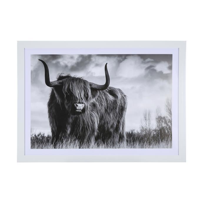 Highland cow framed print, $19.