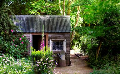 Gardening tools you should have in your shed