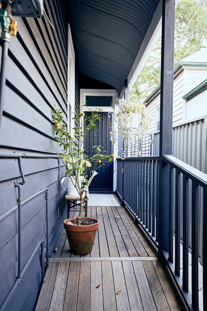 Libby's summer cabin sits in the heart of Cooks Hill and is available for short-term rentals.