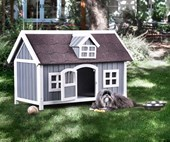 The best pet houses on Instagram