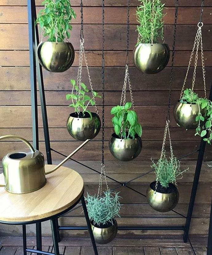 "**Garment Rack Becomes Herb Garden** <br><br> A black garment rack becomes a hanging herb garden with the use hooks and brass hanging planters. *Photo via: [@likyloo](https://www.instagram.com/p/Bdps24tDUc4/?tagged=kmarthacks|target=""_blank""