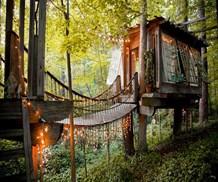 treehouse air bnb