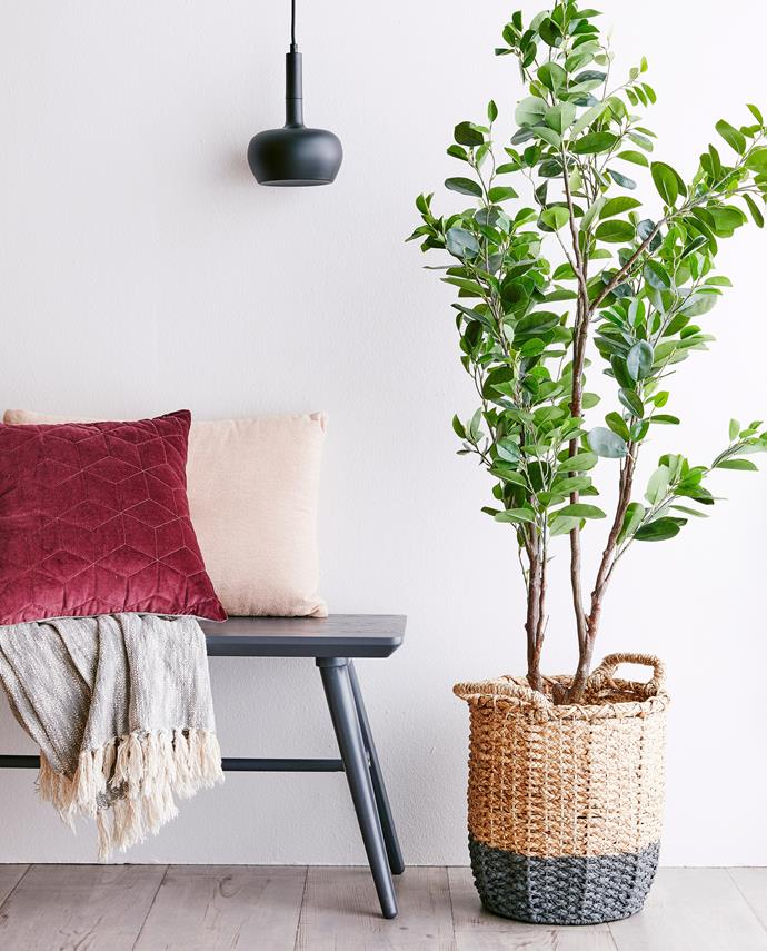 Updating your home for the cooler months can be as simple as introducing fresh soft furnishings in on-trend colours. Photo: Will Horner / *bauersyndication.com.au*