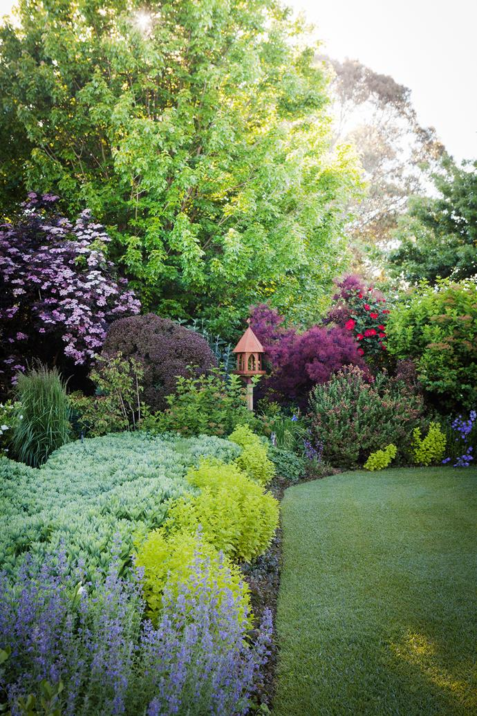 A birdhouse sits within a garden bed featuring (from front) mauve Ajuga 'Caitlin's Giant', silver-blue Sedum 'Autumn Joy', golden feverfew, purple Lophomyrtus 'Black Stallion', Cotinus 'Grace' and Sambucus nigra 'Black Lace'.