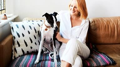 Real pets: Freddie the fun-loving whippet