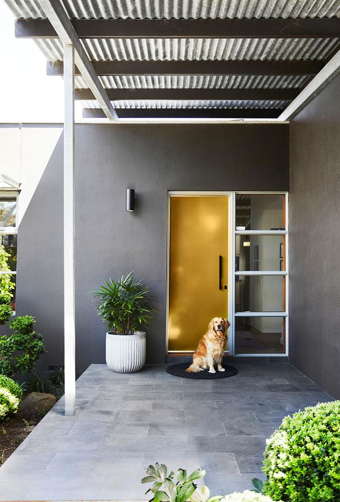 Golden retriever Scout welcomes visitors. Wall light, ISM Objects. Bluestone pavers. Smart buy: 'YDBY' door mat, $25, Ikea.