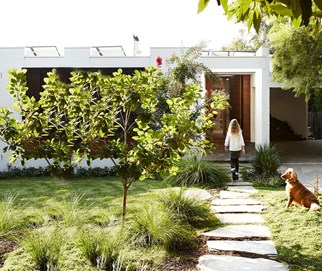 house with dog in australia