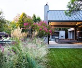 A perennial garden that changes with the seasons