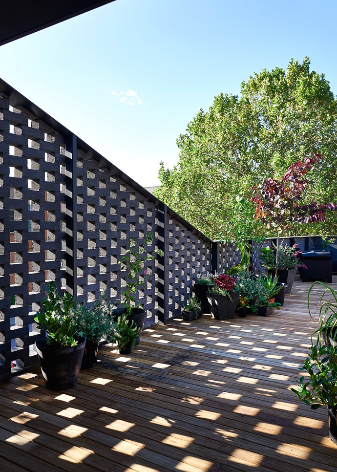 The roof terrace echoes the downstairs courtyard in that if features a brick perimeter, but it has its own identity thanks to timber decking in blackbutt, which has been left to grey. Up here, plantings include myrtle, cercis, olive, lemon and lime trees, plus herbs, succulents and strawberries.