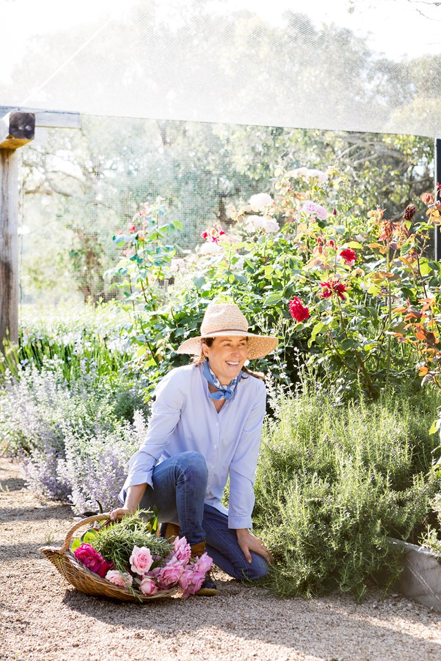 "Enjoying the morning sun, the owner of [country property](https://www.homestolove.com.au/a-modern-country-home-on-the-mornington-peninsula-6484|target=""_blank"") on the Mornington Peninsula has collected a basket of freshly picked roses, lavender and Nepeta.  *Photo: Martina Gemmola*"