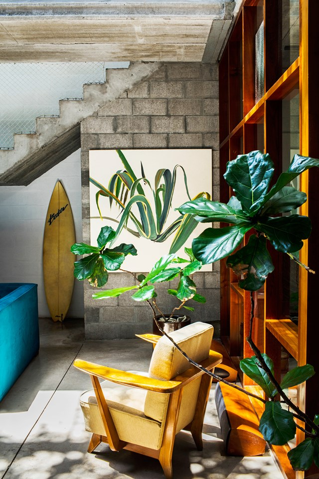 "Indoor plants , off-cuts from the surrounding lush garden and paintings of plants can be found in every room of this [concrete Modernist style home](https://www.homestolove.com.au/a-minimal-modernist-home-filled-with-indoor-plants-6485|target=""_blank"") that has been designed to invite the outdoors in and celebrate its verdant views and proximity to nature."