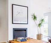 The perfect indoor plants for minimalist homes