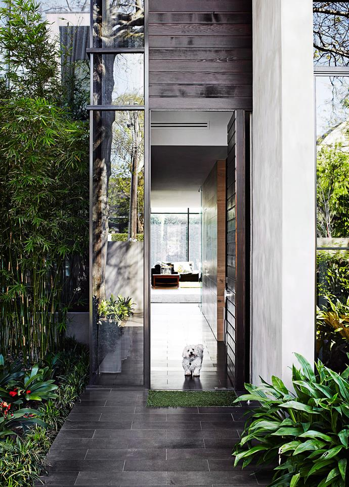 A lush and landscaped pathway creates a inviting entry. Photo: Sharyn Cairns / *bauersyndication.com.au*